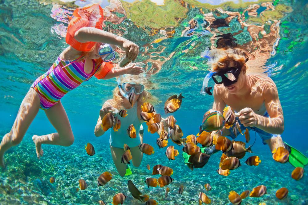 snorkeling lanzarote